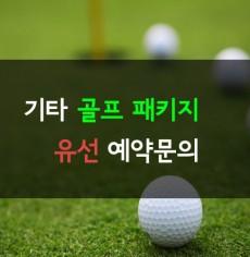 [유선문의]기타 골프패키지